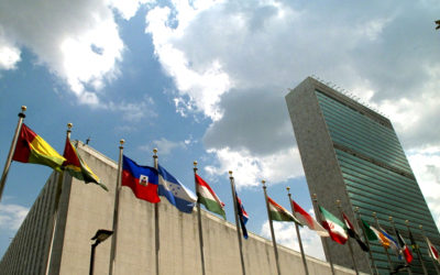 Human Rights Groups Launch UN Action Project